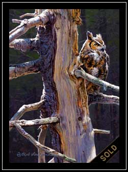 Hooter - great horned owl