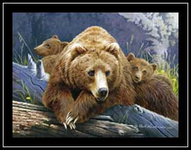 The Three Bears - grizzly family