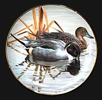"""Pintails"" by Rod Lawrence"